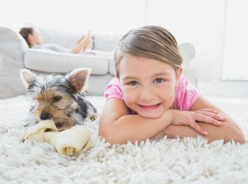 Contact Magnolia Carpet Cleaning Burbank Residential